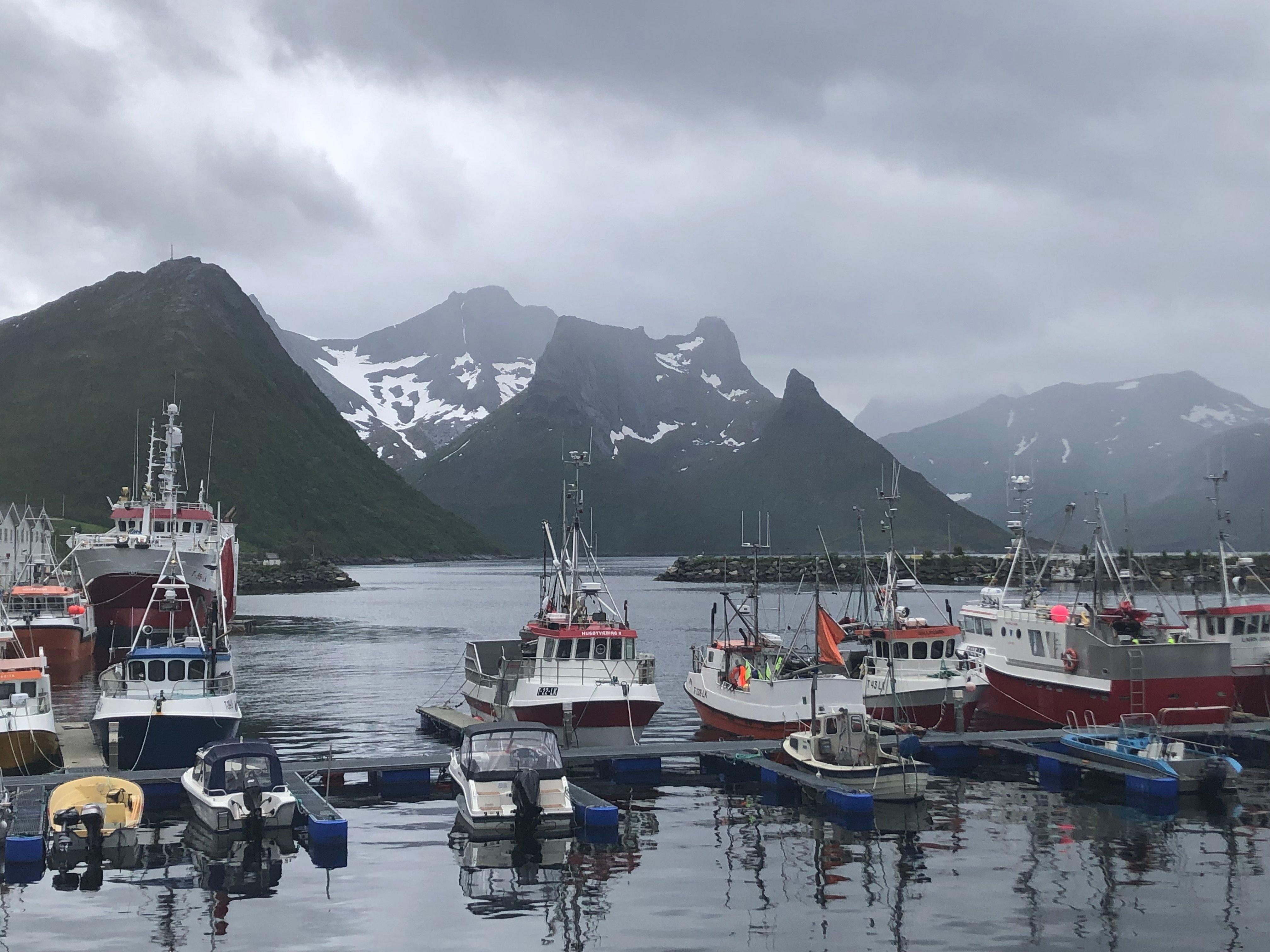 4 - Fishing Fleet