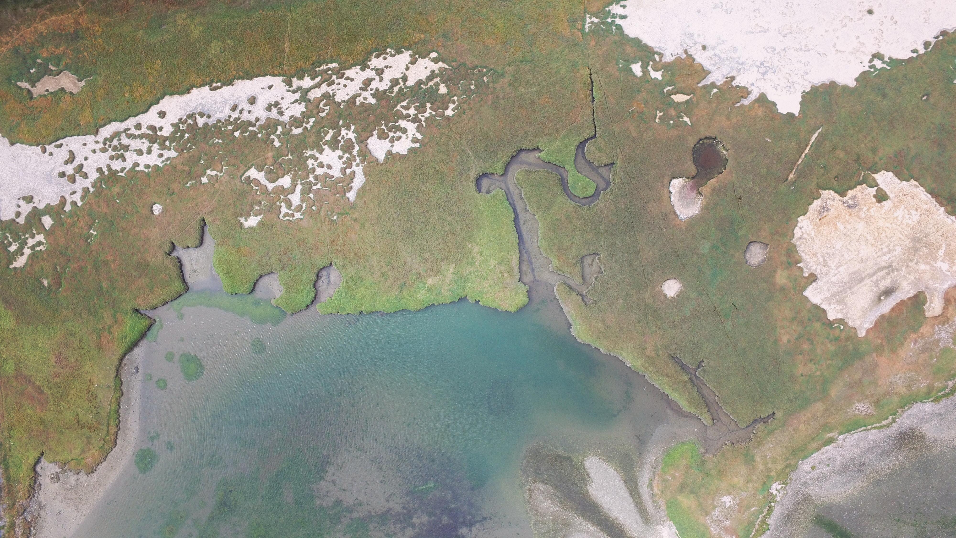 7 - Wetland Aerial