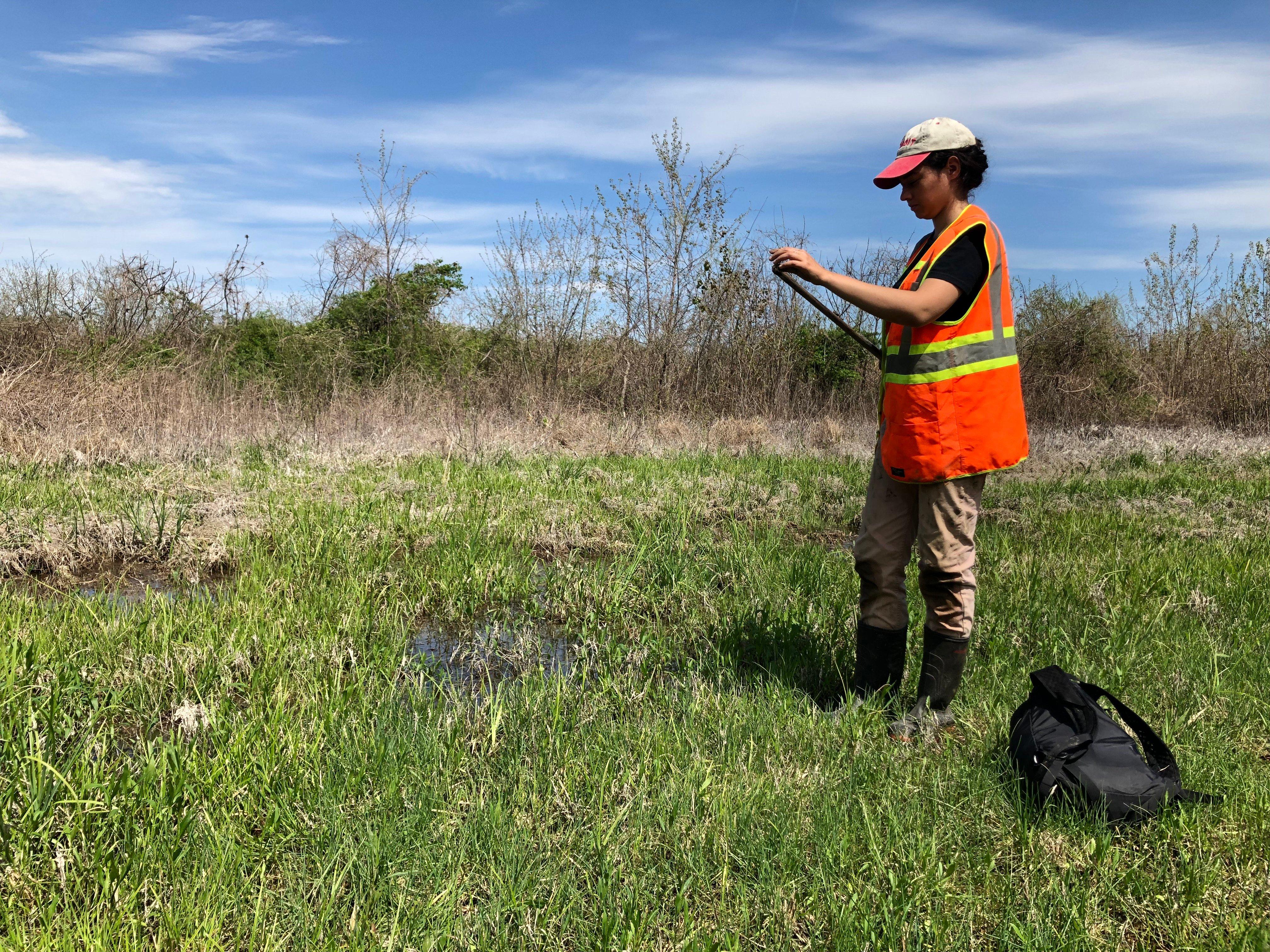 fieldwork (1)